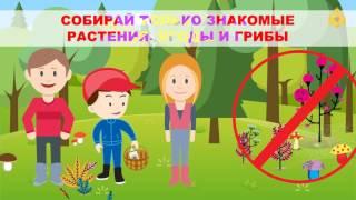 Скачать Правила безопасного поведения в лесу для детей