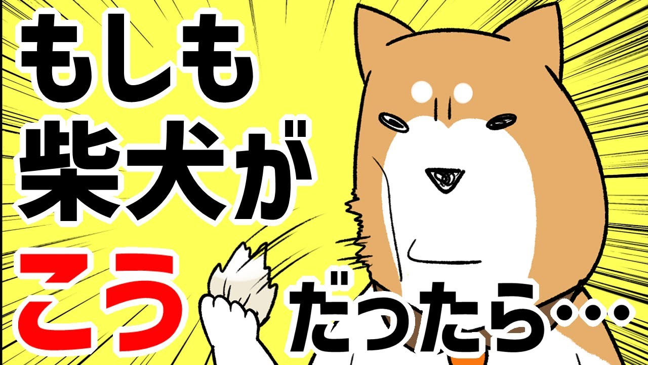 【犬猫まんが】もしも柴犬がこんなだったら面白い