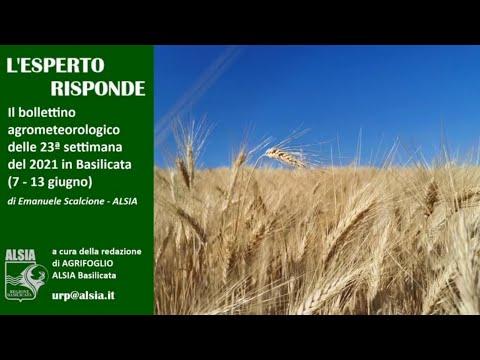 Basilicata, settimana 7 - 13 giugno dal clima inst...