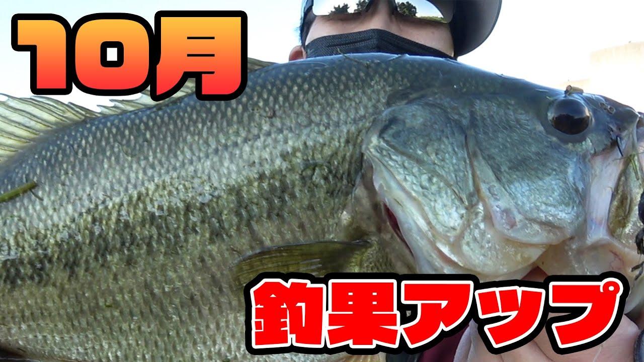 現状 釣り 琵琶湖 バス