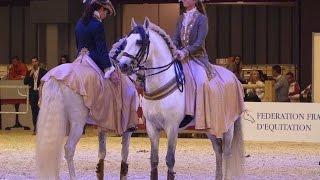 Video Salon du cheval Paris 2015  Pas de deux baroque download MP3, 3GP, MP4, WEBM, AVI, FLV Oktober 2018