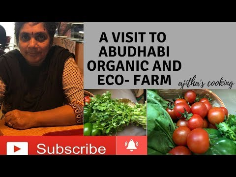 My Visit to Abu Dhabi Organic farm and Eco farm