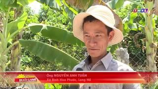 thvl.vn đưa tin về trạng trại lươn giống Thanh Tân