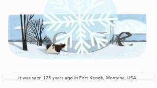 World record for the largest observed snowflake (Google doodle)