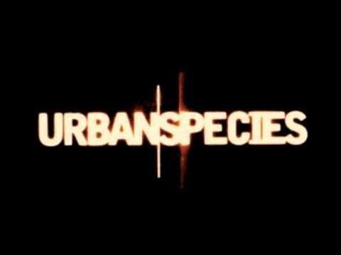 urban species Spiritual Love