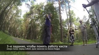 Техника скандинавской ходьбы   Полный урок по скандинавской ходьбе от А Мех  mp4