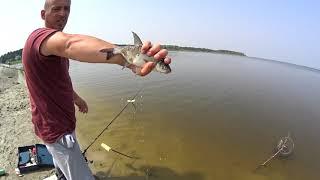 Фидерная рыбалка на водохранилище Селец