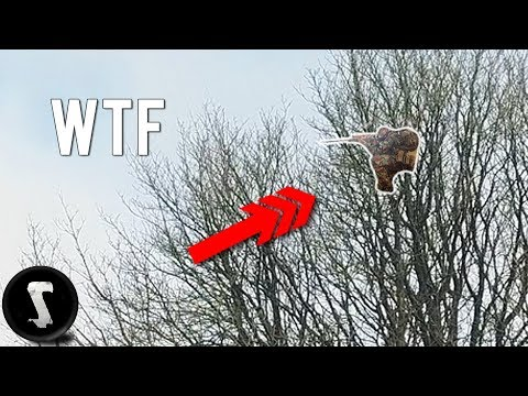 Airsoft Sniper Hides HIGH in Tree and Destroys Everyone. (13 meters / 42 feet high)