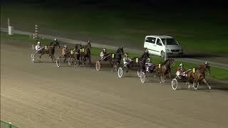 Vidéo de la course PMU PRIX C'EST VENDREDI C'EST WOLVEGA