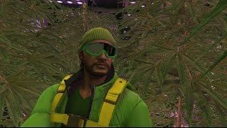 GTA 5 Online: The Evolution of My Weed Farm