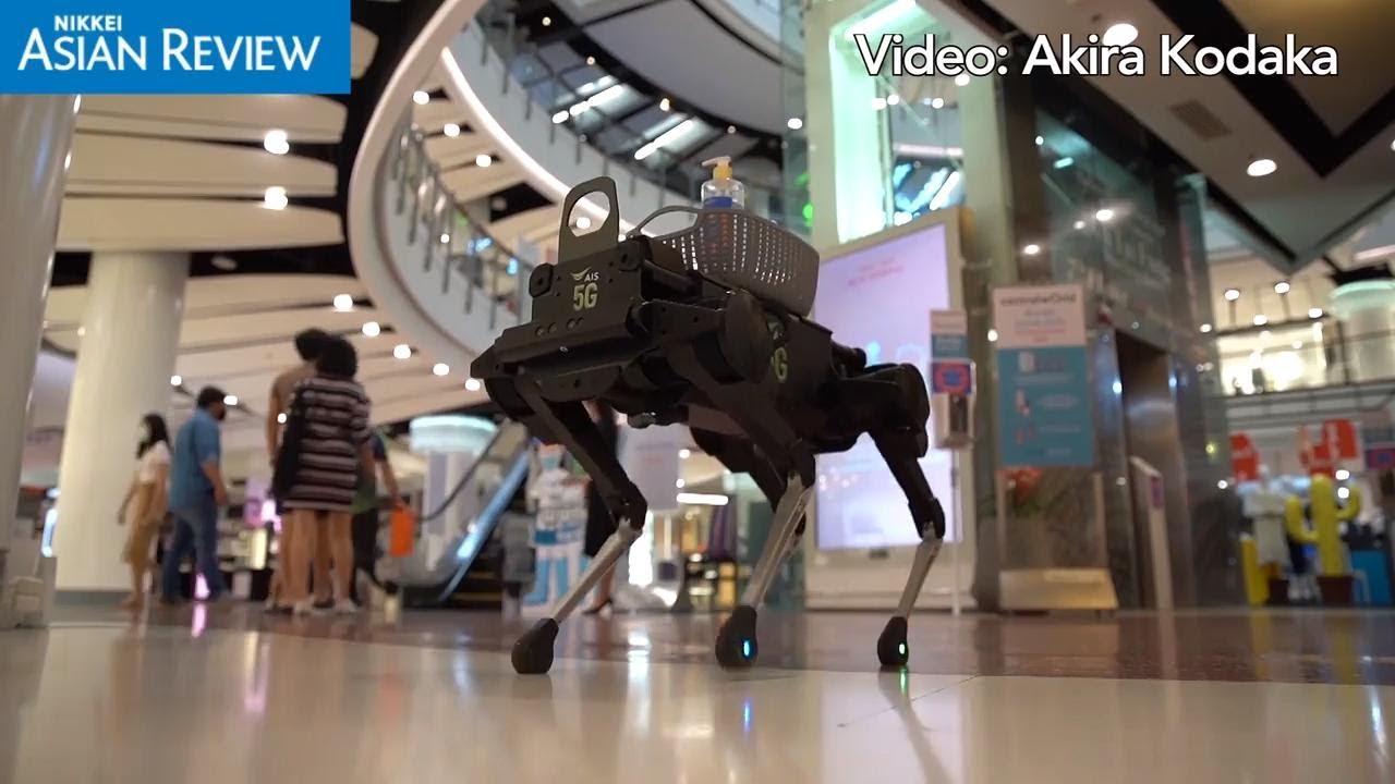 Thai Businesses Develop Robots to adapt to Coronavirus Era