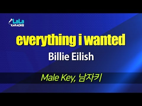 Billie Eilish - Everything I Wanted (Male Key) Karaoke 노래방