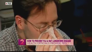 How to Prevent the Flu and Rat Lungworm Disease