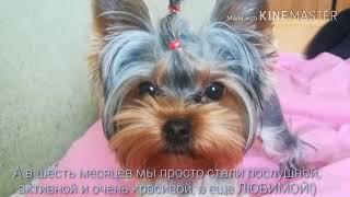 Мотька в 4, 5, 6 месяцев)