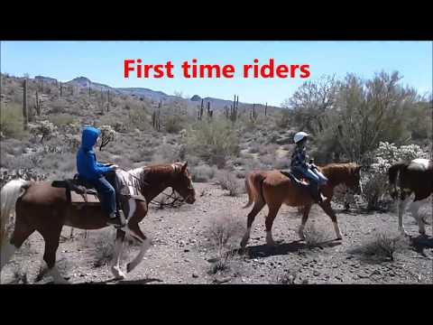 Gold Canyon, Arizona , HorseBack Riding