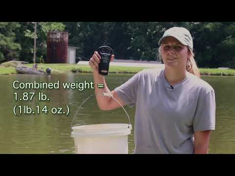 Megan Justice: How To Measure And Weigh Fish