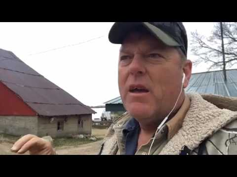 Pastured Poultry: Predation on your chicken farm - Facebook Live Replay