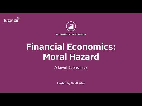 Financial Economics - Moral Hazard