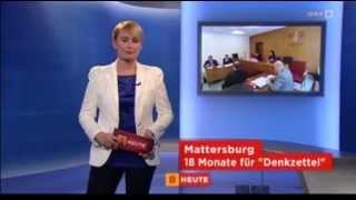 Pensionist Heckenschütze - ORF Burgenland heute - 22.02.2013
