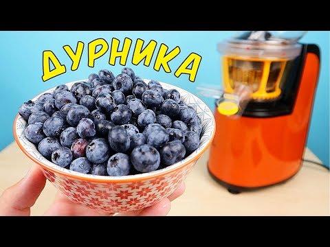 Что если выжать сок из Дурники (Голубики)? Дурника - самая крутая ягода в мире! alex boyko