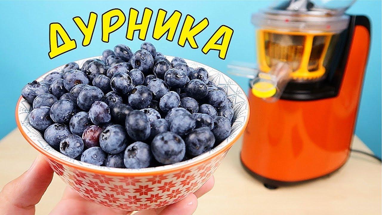 Что если выжать сок из Дурники! Дурника - самая крутая ягода в мире! alex boyko