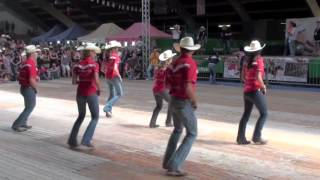 Fast As A Shark line dance - WILD COUNTRY - Voghera Country Festival 2012
