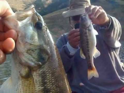 Shaver lake california fish tales youtube for Shaver lake fishing report