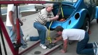 Electric Bug.mov