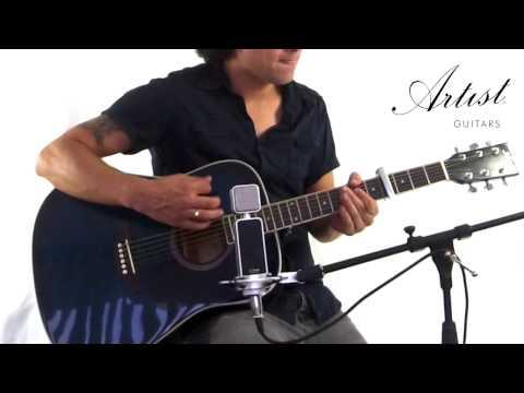 Artist LSP Beginner Acoustic Guitar Demo