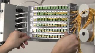 ORSM 4 Module ODF video