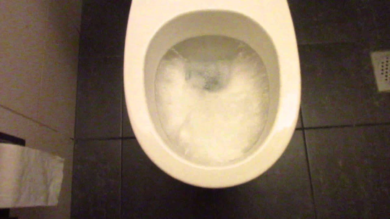 2008 Wall Mounted Keramag toilet with a Auto Flush - YouTube
