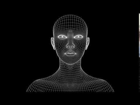 Moving Head Wireframe 3D FACE VJ LOOP  ...