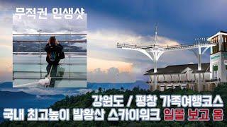 국내 최고높이 스카이워크, 최대길이 발왕산 케이블카 가…