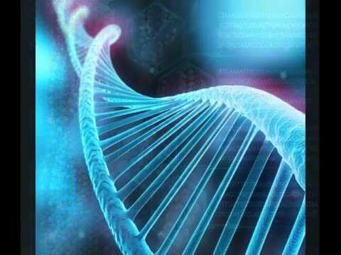 Dr. Steven Greer : Sirius 6 inch Entity has Very Strange DNA