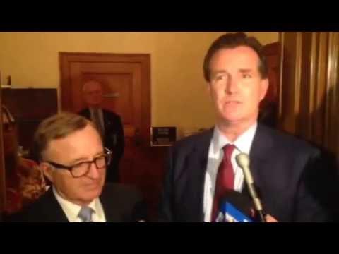 Flanagan Chosen as Senate Leader