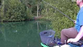 Pêche au coup en rivière avec le montage de ligne double bulk