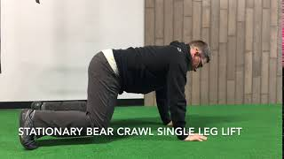 Stationary Single Leg Bear Crawl Lift