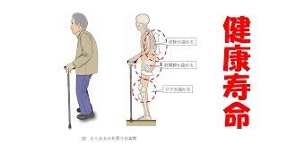 健康寿命(柔軟性について)