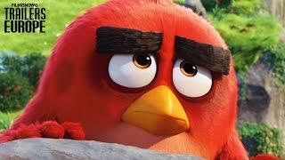 ANGRY BIRDS Tráiler Oficial en español - Animación [HD]
