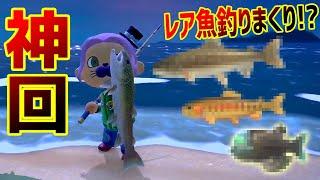 【神回】真幻の超激レア魚を釣りまくりで神引きしまくり!! ラッシー / LAS…