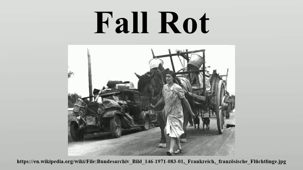 Fall Rot