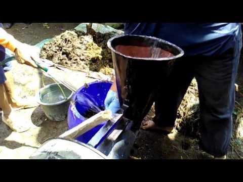 Cara membuat biogas Kotoran Sapi - YouTube