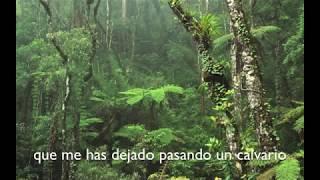 Mitú - Solitario (Lyric Video)