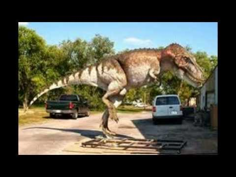 Tribute To Daspletosaurus