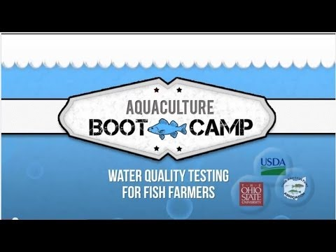 Water Quality Testing For Fish Farmers