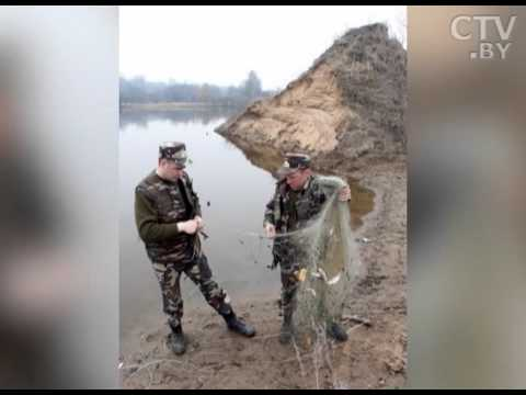 запрет ловли на налима в беларуси