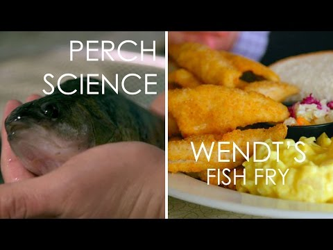 Perch Science & Wendt's Fish Fry - Full Episode