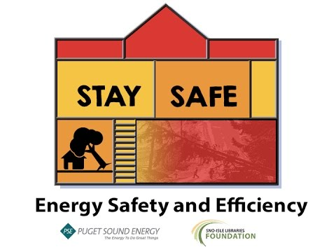 PSE Energy Safety and Efficiency