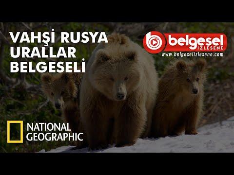 Urallar Vahşi Doğa Belgeseli