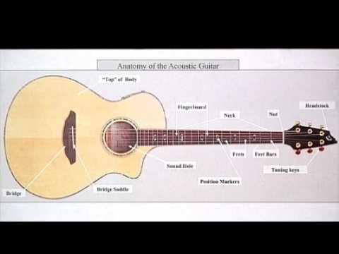 Guitar Lessons For Beginners Guitar Foundations Anatomy Of The